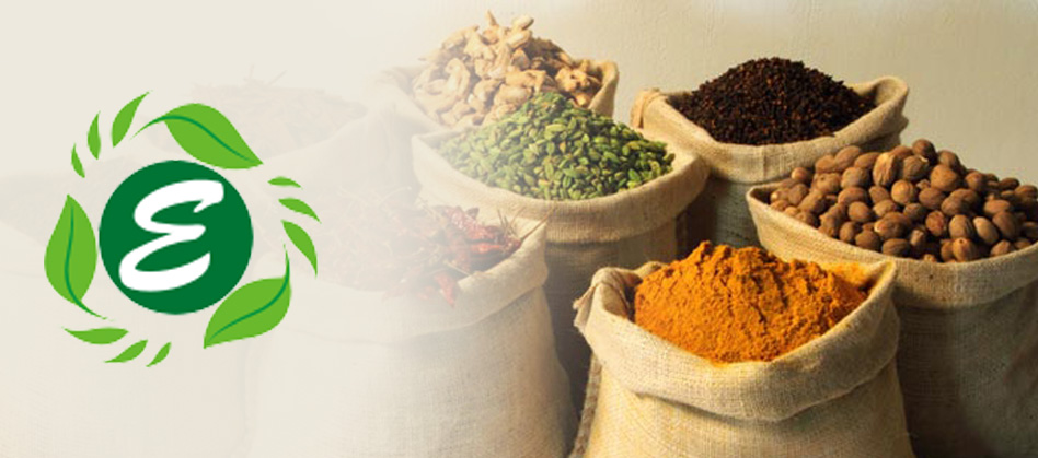 Best Quality Indian Spices