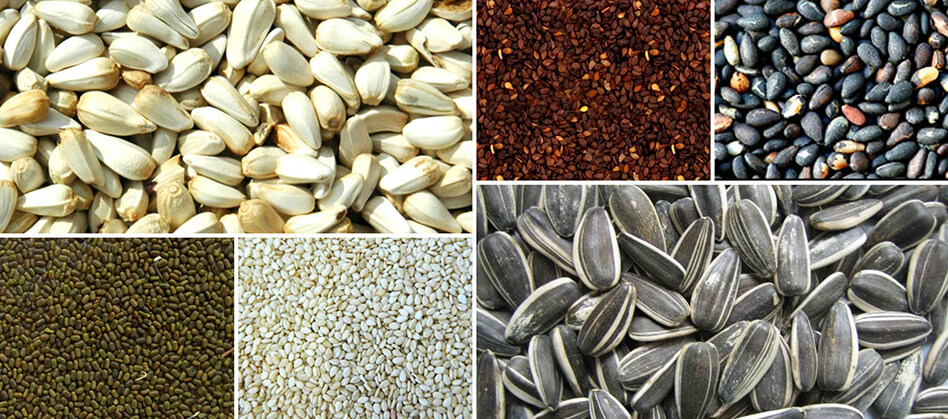 sesame seeds exporters in India